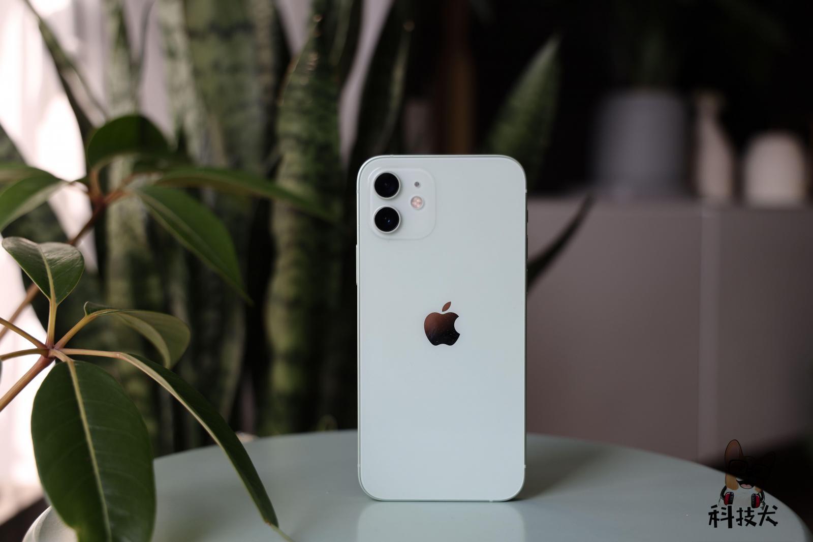 """华为nova8 SE""""高仿""""iPhone 12;后者拒绝降价"""